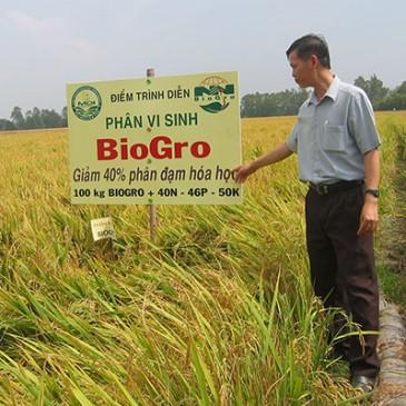 Các dự án BioGro đã triển khai