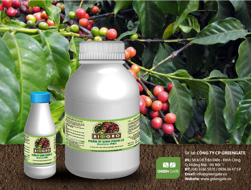 BioGro-PB1 Phân vi sinh phun lá dùng cho cây công nghiệp cây ăn quả