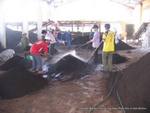 Nhà máy sản xuất phân BioGro tại Thanh Hóa