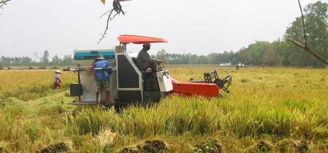 Những lợi ích của phân vi sinh BioGro mang lại cho nông dân