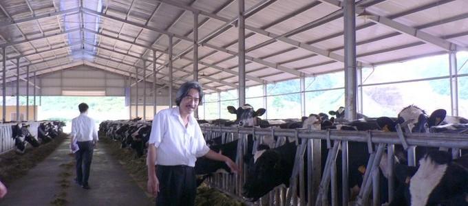 Xử lý chất thải chăn nuôi bằng sản phẩm BioGro thành phân bón hữu cơ vi sinh