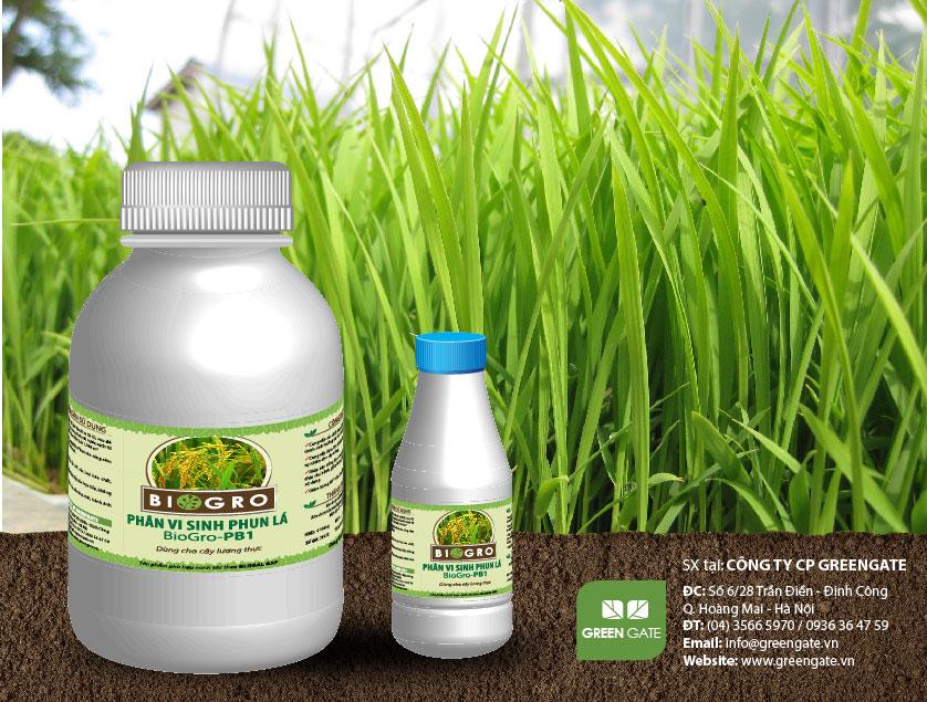 BioGro-PB1 Phân vi sinh phun lá dùng cho cây lúa, cây lương thực