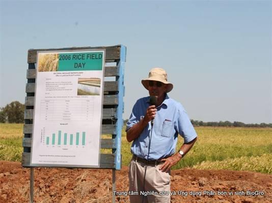 Cánh đồng khảo nghiệm phân bón vi sinh BioGro tại Australia